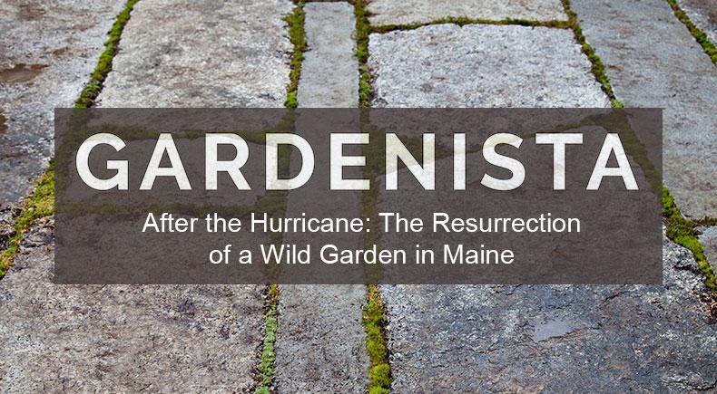 Matthew-Cunningham-Landscape-Design-Gardenista