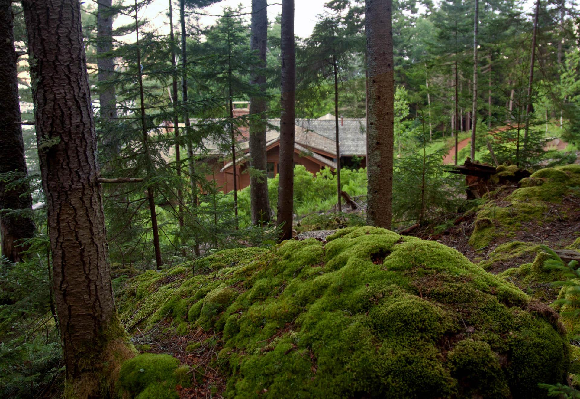 Le Petit Chalet | Matthew Cunningham Landscape Design LLC