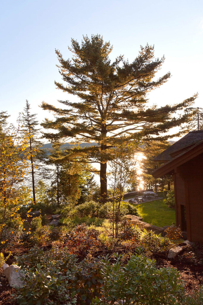Chalet Nursery And Garden Center: Matthew Cunningham Landscape Design LLC